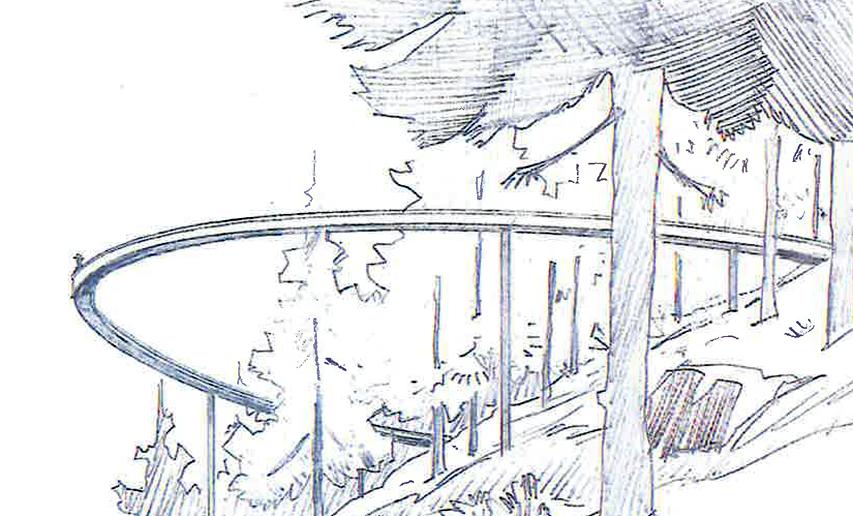 Passerelle dans les cimes des arbres au Centre du Valais